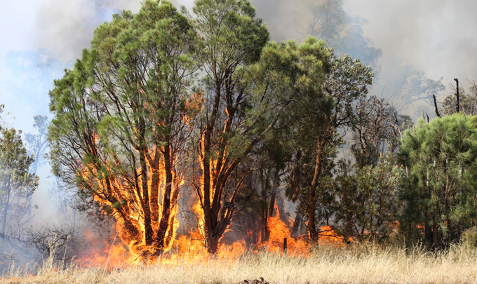 How climate change influenced Australia's unprecedented fires
