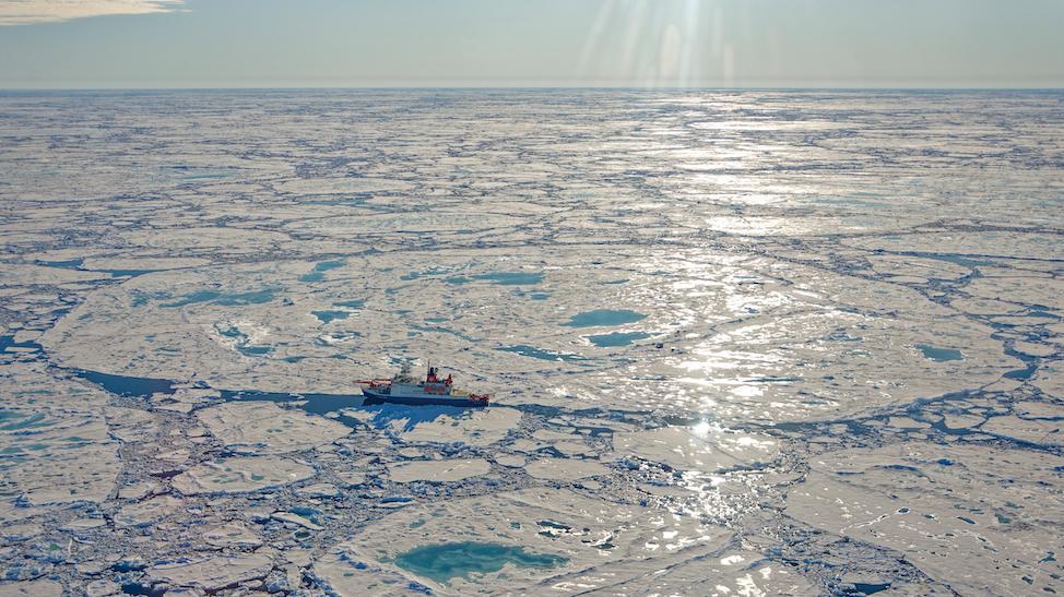Arctic ice floe