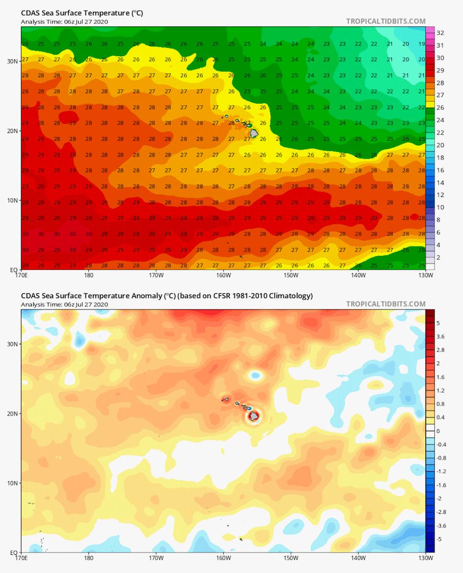 Sea surfact temperatures
