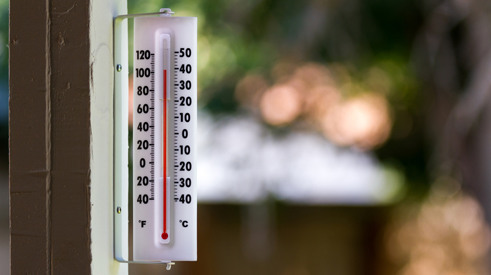 Outdoor thermometer 100 degrees