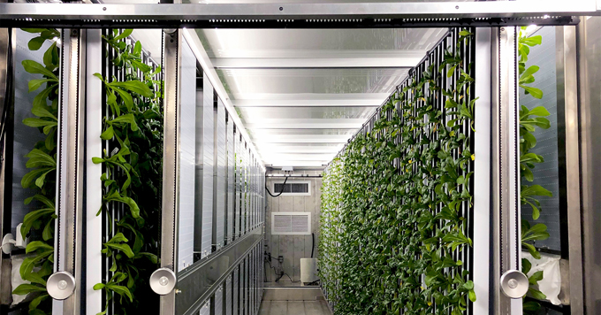 Shipping container farm