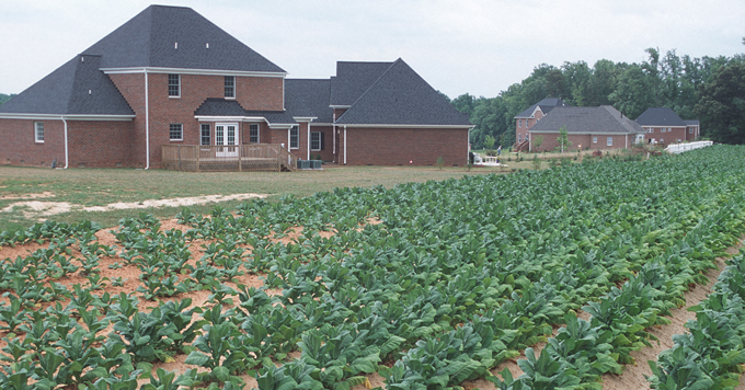 Farmland and homes