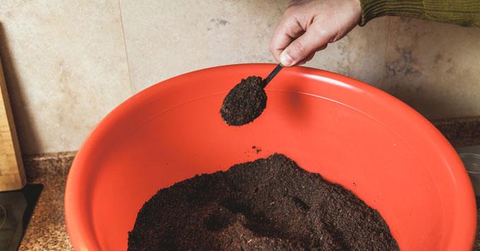 Spoonful of soil