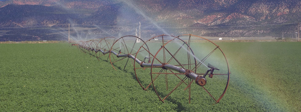 Challenges ahead for Calif ag water users