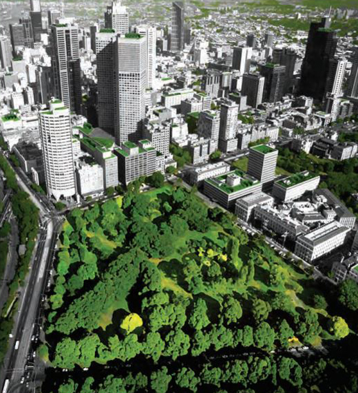 Melbourne planned urban forest visual