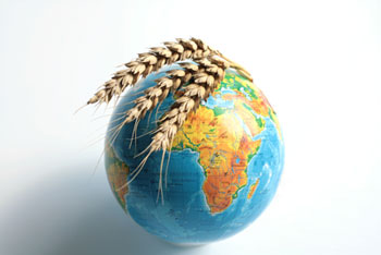 Globe with wheat overlayed on top