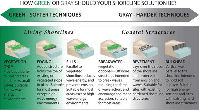 Living shorelines chart