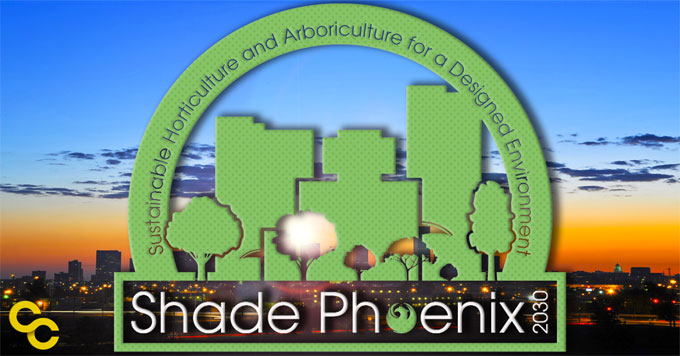 Shade Phoenix image graphic