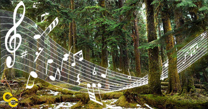 Forest with music notes image
