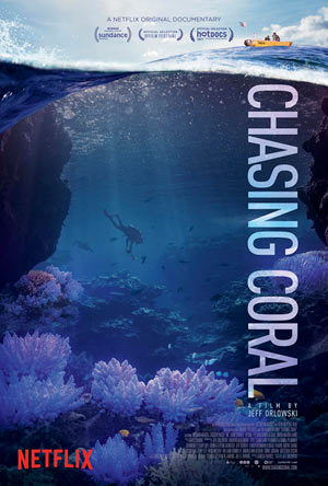 Chasing Coral image
