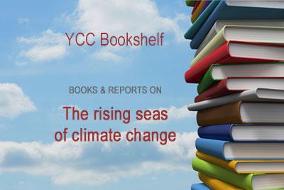 Bookshelf graphic