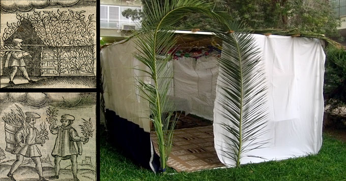 Sukkah and drawings collage
