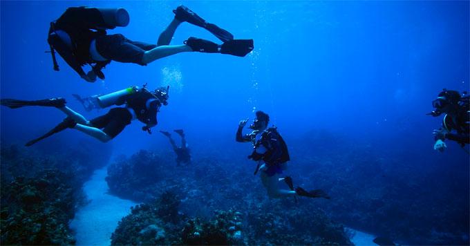 Force Blue divers