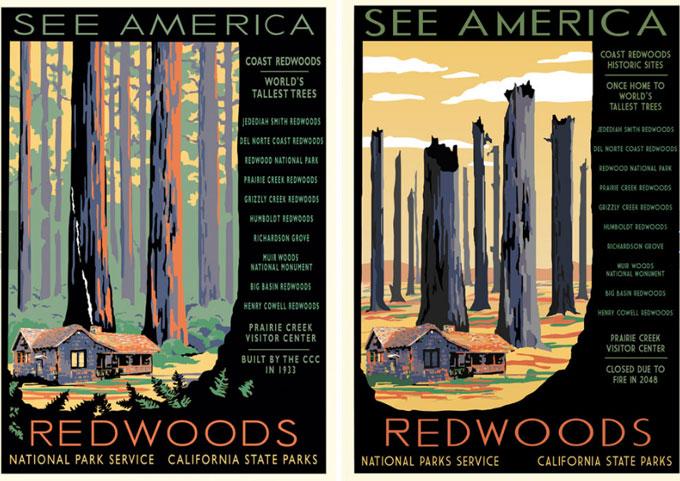 Redwoods poster crop
