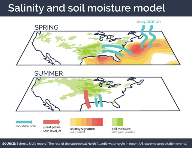 Salinity and soil moisture model