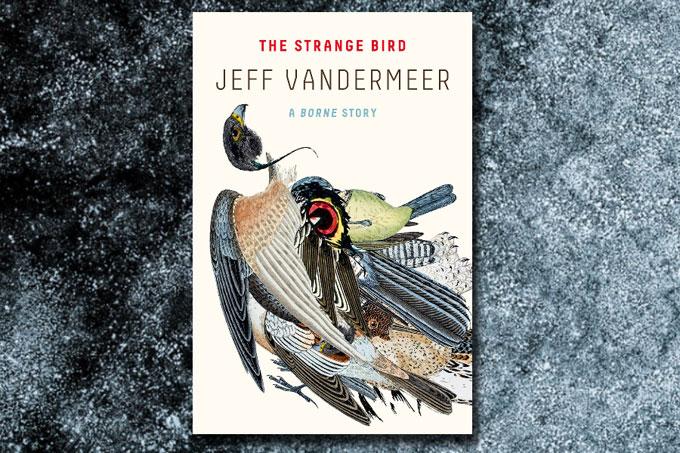 The Strange Bird book cover