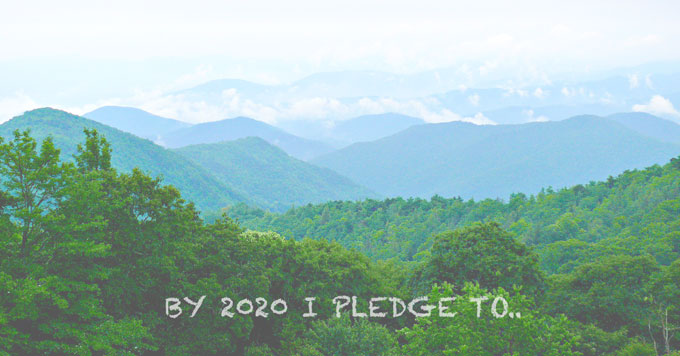 I pledge graphic