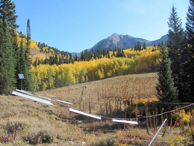 Rocky Mountain meadow