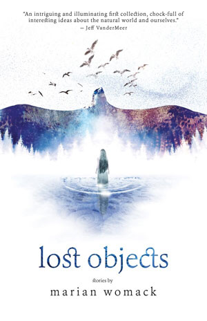 Lost Objects book