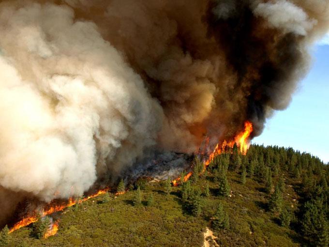 2007 Zaca Fire