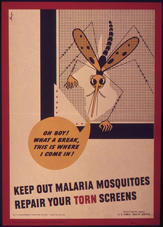 Mosquito screen