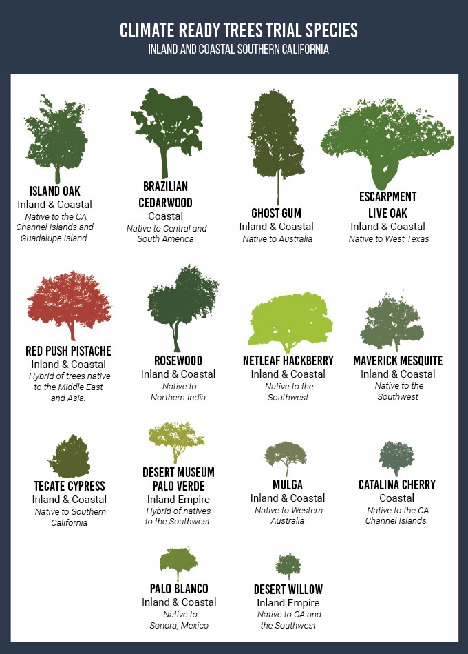 Climate-ready trees