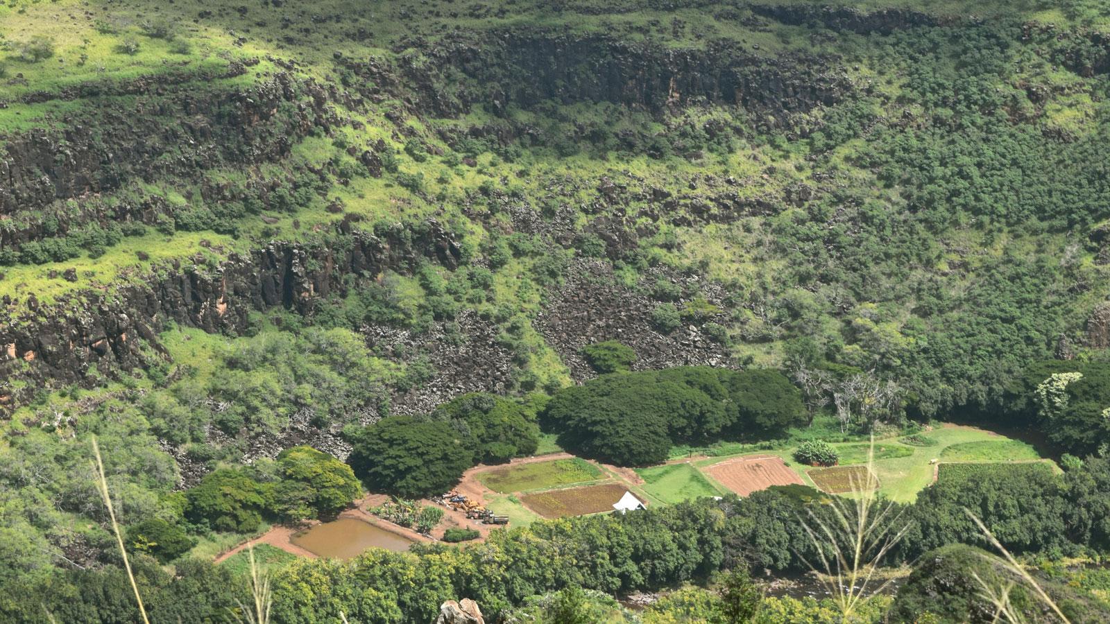 Hawaii terraced land